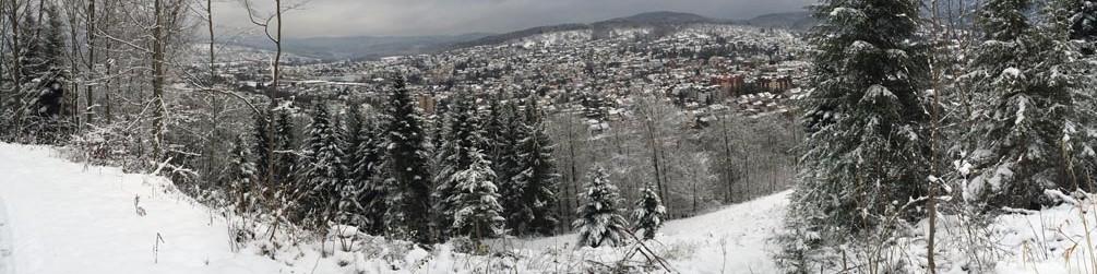 cropped-Winterbild2015.jpg
